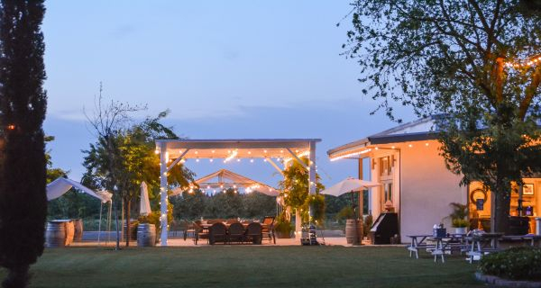 Courtyard Pairings at Durst - Visit Lodi Events Calendar